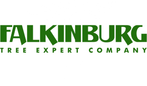 Falkinburg Tree Expert Company